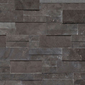 Carbon Honed Accent Panel (Limestone)