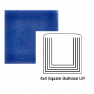 Square Up Steppe Bullnose in Very Royal
