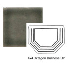 Octagon Up Steppe Bullnose in Jet Stream